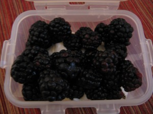 greek yogurt and blackberries